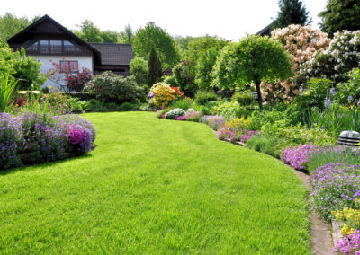 Garten im Sonnenschein